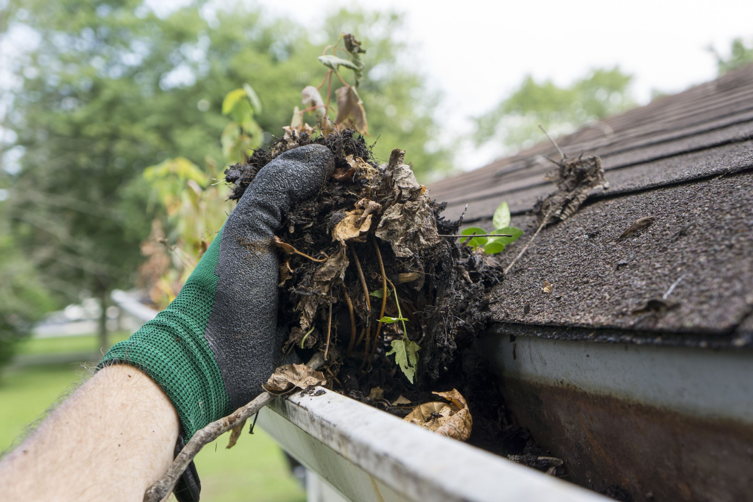 How to Clean Out Your Gutters